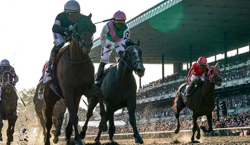 Tips on how to bet on Belmont Stakes online